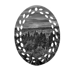 Ecuador Landscape Scene At Andes Range Oval Filigree Ornament (2-Side)  by dflcprints