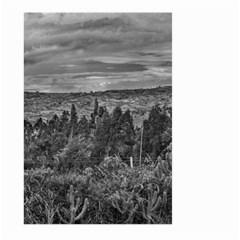 Ecuador Landscape Scene At Andes Range Large Garden Flag (two Sides) by dflcprints
