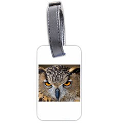 Great Horned Owl 1 Luggage Tags (One Side)  by jackiepopp