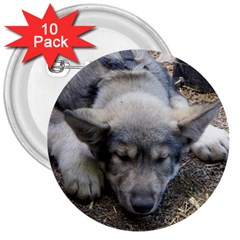 Wolf pup 3  Buttons (10 pack)  by jackiepopp