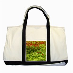 Poppy V Two Tone Tote Bag by colorfulartwork