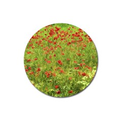 Poppy Vii Magnet 3  (round) by colorfulartwork