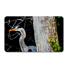 Peek a Boo! Magnet (Rectangular) by dawnsiegler