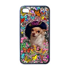 Chi Chi In Butterflies, Chihuahua Dog In Cute Hat Apple Iphone 4 Case (black) by DianeClancy