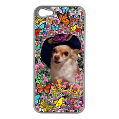 Chi Chi In Butterflies, Chihuahua Dog In Cute Hat Apple Iphone 5 Case (silver) by DianeClancy