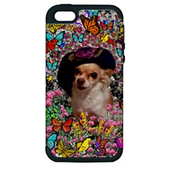 Chi Chi In Butterflies, Chihuahua Dog In Cute Hat Apple Iphone 5 Hardshell Case (pc+silicone) by DianeClancy