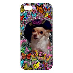 Chi Chi In Butterflies, Chihuahua Dog In Cute Hat Apple Iphone 5 Premium Hardshell Case by DianeClancy