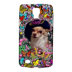 Chi Chi In Butterflies, Chihuahua Dog In Cute Hat Galaxy S4 Active by DianeClancy