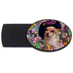 Chi Chi In Butterflies, Chihuahua Dog In Cute Hat Usb Flash Drive Oval (2 Gb)  by DianeClancy