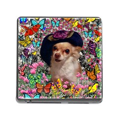 Chi Chi In Butterflies, Chihuahua Dog In Cute Hat Memory Card Reader (square) by DianeClancy