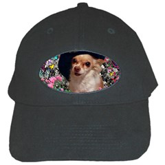 Chi Chi In Butterflies, Chihuahua Dog In Cute Hat Black Cap by DianeClancy