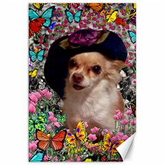Chi Chi In Butterflies, Chihuahua Dog In Cute Hat Canvas 20  X 30   by DianeClancy