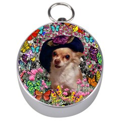 Chi Chi In Butterflies, Chihuahua Dog In Cute Hat Silver Compasses by DianeClancy