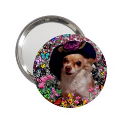Chi Chi In Butterflies, Chihuahua Dog In Cute Hat 2 25  Handbag Mirrors by DianeClancy