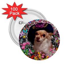 Chi Chi In Butterflies, Chihuahua Dog In Cute Hat 2 25  Buttons (100 Pack)  by DianeClancy