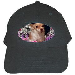Chi Chi In Flowers, Chihuahua Puppy In Cute Hat Black Cap by DianeClancy