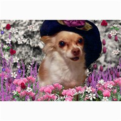 Chi Chi In Flowers, Chihuahua Puppy In Cute Hat Collage Prints
