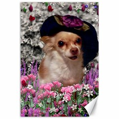 Chi Chi In Flowers, Chihuahua Puppy In Cute Hat Canvas 12  X 18   by DianeClancy