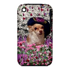 Chi Chi In Flowers, Chihuahua Puppy In Cute Hat Apple Iphone 3g/3gs Hardshell Case (pc+silicone) by DianeClancy