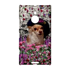 Chi Chi In Flowers, Chihuahua Puppy In Cute Hat Nokia Lumia 1520 by DianeClancy