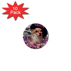 Chi Chi In Flowers, Chihuahua Puppy In Cute Hat 1  Mini Magnet (10 Pack)  by DianeClancy
