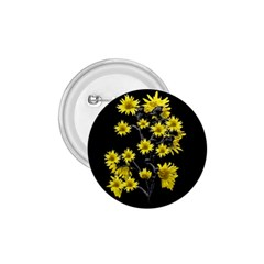 Sunflowers Over Black 1 75  Buttons by dflcprints