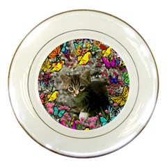 Emma In Butterflies I, Gray Tabby Kitten Porcelain Plates by DianeClancy