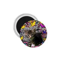 Emma In Butterflies I, Gray Tabby Kitten 1 75  Magnets by DianeClancy