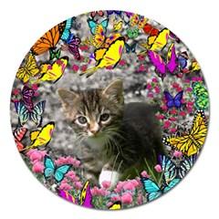 Emma In Butterflies I, Gray Tabby Kitten Magnet 5  (round) by DianeClancy