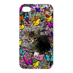 Emma In Butterflies I, Gray Tabby Kitten Apple Iphone 4/4s Premium Hardshell Case by DianeClancy