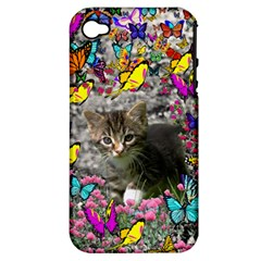 Emma In Butterflies I, Gray Tabby Kitten Apple Iphone 4/4s Hardshell Case (pc+silicone) by DianeClancy