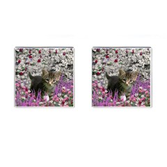 Emma In Flowers I, Little Gray Tabby Kitty Cat Cufflinks (square) by DianeClancy