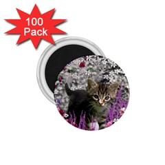 Emma In Flowers I, Little Gray Tabby Kitty Cat 1 75  Magnets (100 Pack)  by DianeClancy