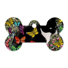 Freckles In Butterflies I, Black White Tux Cat Dog Tag Bone (one Side) by DianeClancy