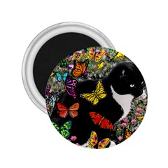 Freckles In Butterflies I, Black White Tux Cat 2 25  Magnets by DianeClancy