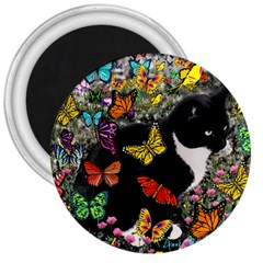 Freckles In Butterflies I, Black White Tux Cat 3  Magnets by DianeClancy