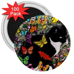 Freckles In Butterflies I, Black White Tux Cat 3  Magnets (100 Pack) by DianeClancy