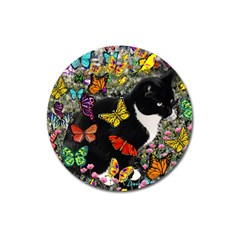 Freckles In Butterflies I, Black White Tux Cat Magnet 3  (round) by DianeClancy