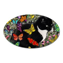 Freckles In Butterflies I, Black White Tux Cat Oval Magnet by DianeClancy