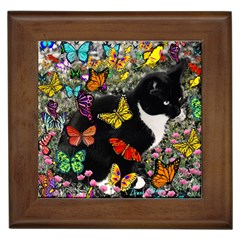 Freckles In Butterflies I, Black White Tux Cat Framed Tiles by DianeClancy