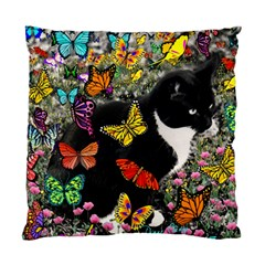 Freckles In Butterflies I, Black White Tux Cat Standard Cushion Case (one Side) by DianeClancy