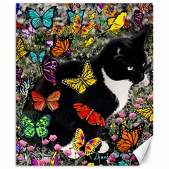 Freckles In Butterflies I, Black White Tux Cat Canvas 8  X 10  by DianeClancy