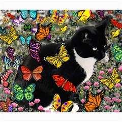 Freckles In Butterflies I, Black White Tux Cat Canvas 20  X 24   by DianeClancy