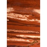 Red Earth Natural GIRL 3D Greeting Card (7x5)  Inside