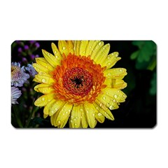 Yellow Flower Close up Magnet (Rectangular) by MichaelMoriartyPhotography