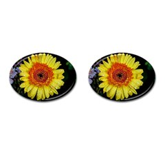 Yellow Flower Close Up Cufflinks (oval) by MichaelMoriartyPhotography