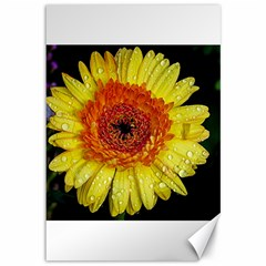 Yellow Flower Close Up Canvas 12  X 18   by MichaelMoriartyPhotography