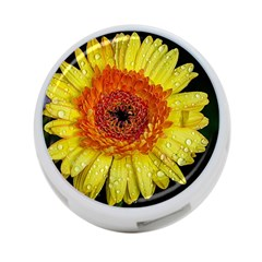 Yellow Flower Close Up 4 Port Usb Hub (two Sides)  by MichaelMoriartyPhotography