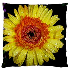 Yellow Flower Close Up Large Flano Cushion Case (one Side) by MichaelMoriartyPhotography