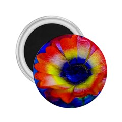 Tie Dye Flower 2 25  Magnets by MichaelMoriartyPhotography